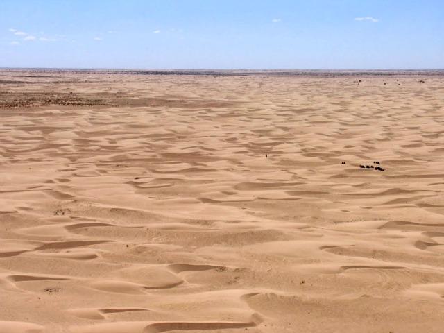 Desert form above
