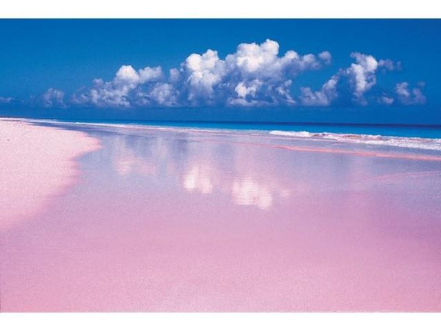 Pink Sands Beach, Μπαχάμες, Καραϊβική