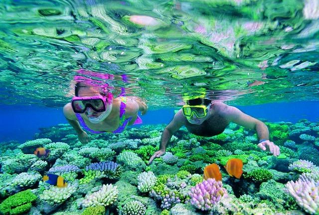 Megalos koralliogenis ifalos